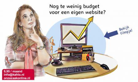 Op zoek naar een goedkope maar professionele website? Huur er eentje!